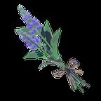 BotW Cool Safflina Icon.png
