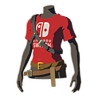 BotW Nintendo Switch Shirt Icon.png