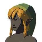 BotW Cap of the Wild Icon.png