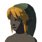 BotW Cap of Twilight Icon.png