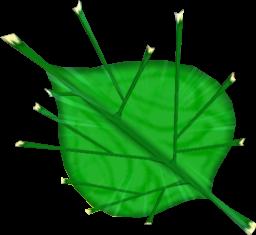 TWW Deku Leaf Model.png