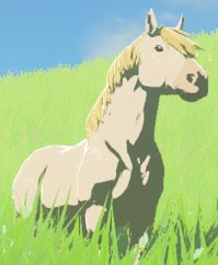BotW White Horse Model.png