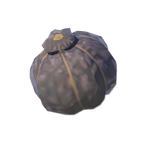 BotW Hearty Truffle Icon.png
