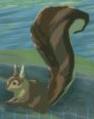 BotW Bushy-Tailed Squirrel Model.png