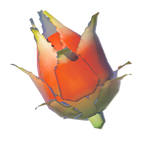BotW Voltfruit Icon.png