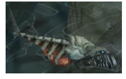 TP Skullfish Model.png