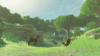 BotW E3 Trailer Forest Area.png