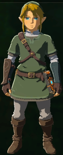 BotW Twilight Set Model.png