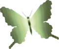TP Male Butterfly Render.png