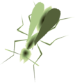 TP Male Ant Render.png