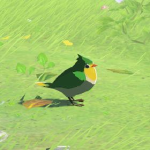 BotW Hyrule Compendium Common Sparrow.png