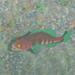 BotW Hyrule Compendium Staminoka Bass.png