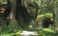 Sacred Grove 2.jpg