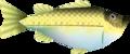 OoT Hyrule Bass Model.png
