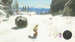 BotW Shield Surfing.png