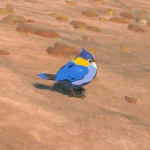 BotW Hyrule Compendium Blue Sparrow.png