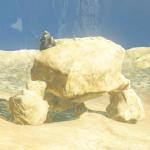 BotW Hyrule Compendium Stone Talus (Rare).png