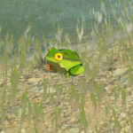 BotW Hyrule Compendium Hot-Footed Frog.png
