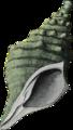 LA Conch Horn Artwork 2.png