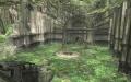 Sacred Grove Inner.jpg