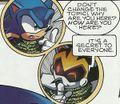 Sonic-Zelda reference.jpg