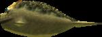 MM3D Lord Chapu-Chapu Model.png