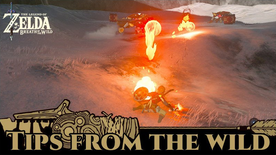 BotW Tips from the Wild Banner 09.png