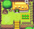 TMC Link's House.png
