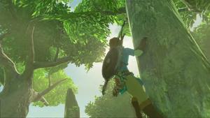 BotW Tree Climbing.png