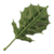 BotW Korok Leaf Icon.png
