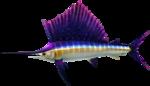 MM3D Grand Swordfish Model.png