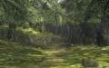 Ordon Woods.jpg