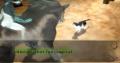 Cat Chat.jpg
