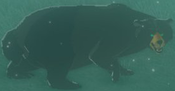 BotW Honeyvore Bear Model.png