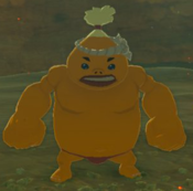 BotW Bayge Model.png
