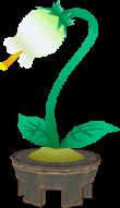 TWW Town Flower Model.png