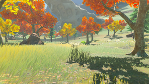 BotW North Akkala Valley.png