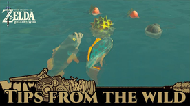BotW Tips from the Wild Banner 12.png