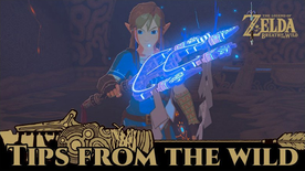 BotW Tips from the Wild Banner 19.png