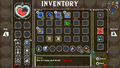 CoH Inventory Screen.png