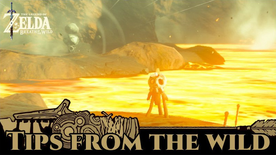 BotW Tips from the Wild Banner 10.png