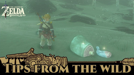 BotW Tips from the Wild Banner 08.png