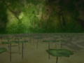 Lily pads TP.png