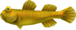 MM3D Goodta Goby Model.png