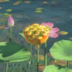 BotW Hyrule Compendium Fleet-Lotus Seeds.png