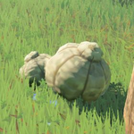 BotW Hyrule Compendium Big Hearty Truffle.png
