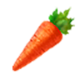 HWDE Carrot Food Icon.png