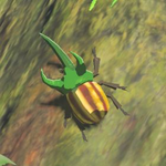BotW Hyrule Compendium Rugged Rhino Beetle.png