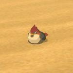 BotW Hyrule Compendium Sand Sparrow.png