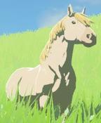 BotW White Horse Model.png